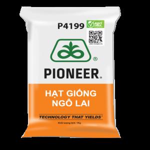 Hat-giong-ngo-lai-p4199