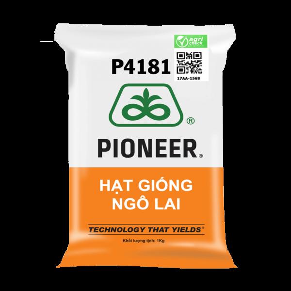 hat-giong-ngo-p4181
