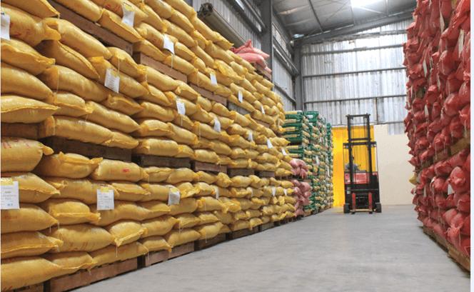 kho bảo quản gạo sạch