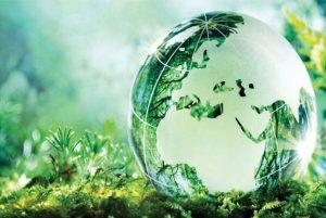 Hình 3. Thuốc trừ cỏ sinh học bảo vệ môi trường