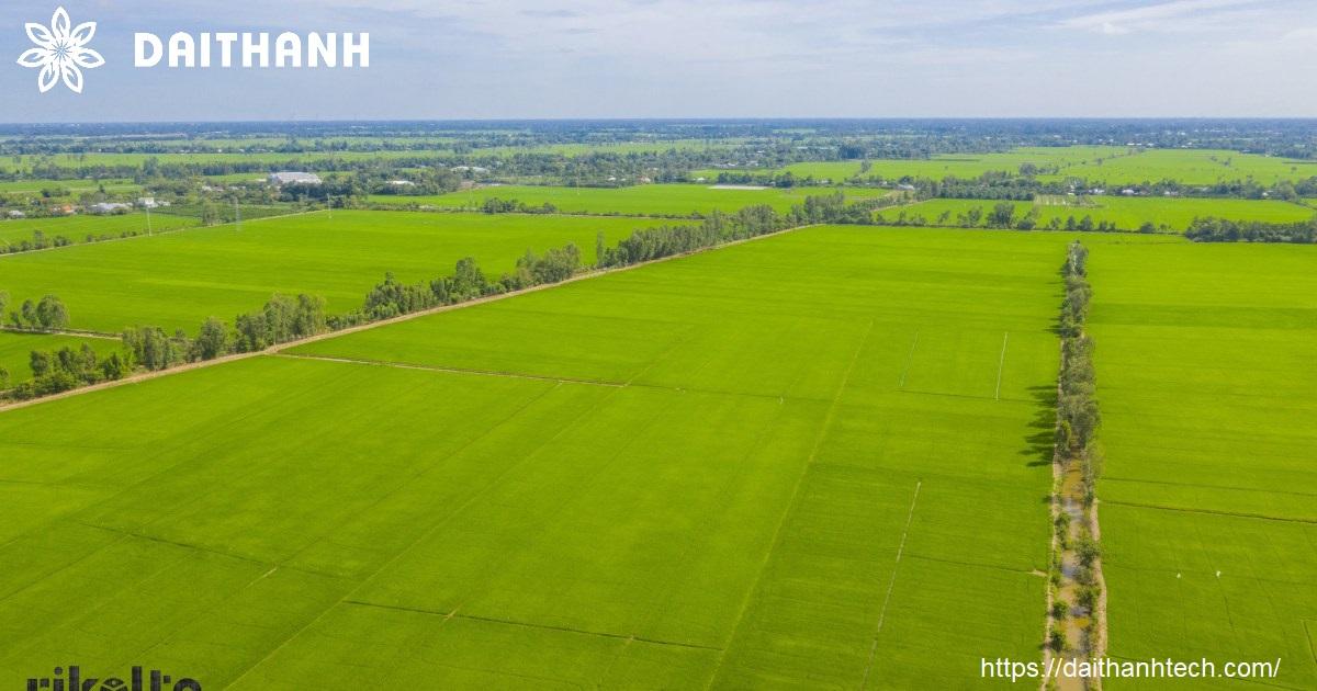lợi thế và khó khăn nông nghiệp hữu cơ ở việt nam