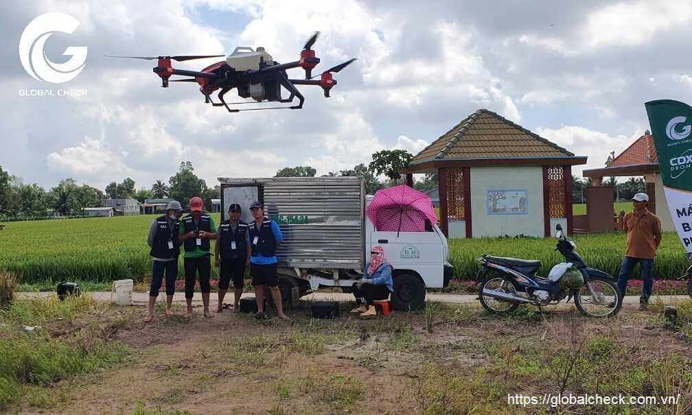 Đào tạo phi công lái máy bay nông nghiệp cho đại lý cánh đồng xanh