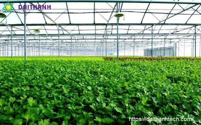 Tham khảo một số mô hình trang trại hữu cơ tại Việt Nam