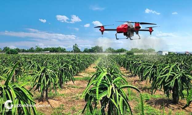 trẻ hóa nông nghiệp